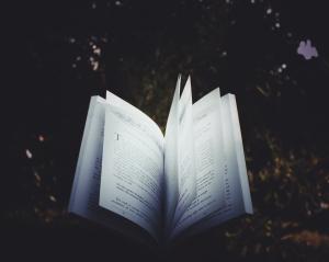 corrigeren-redigeren-boek